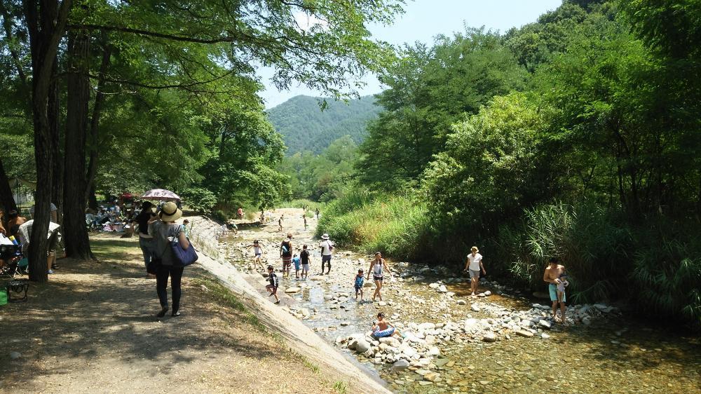 2016お盆 武石 川遊び