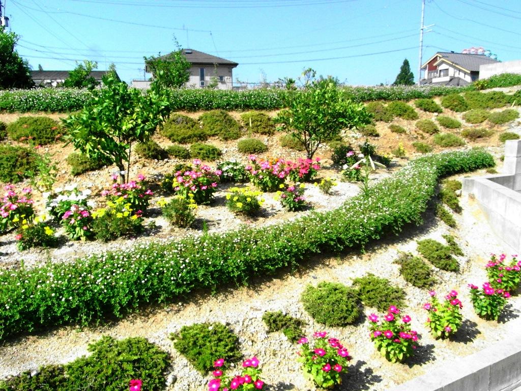 安城Y様 きれいな花壇
